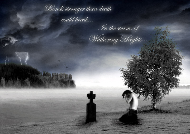 The emotions and activity in the novel wuthering heights by emily bronte